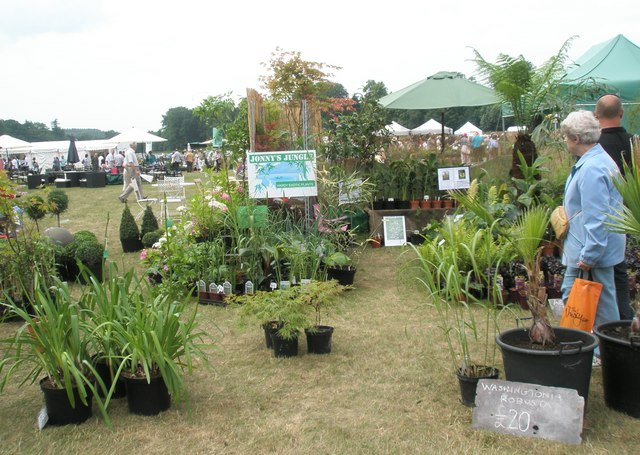 2010 Stansted House Garden Show- plant stall (14)