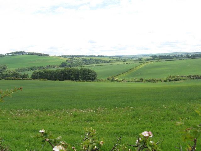 Grazing land near Baittens