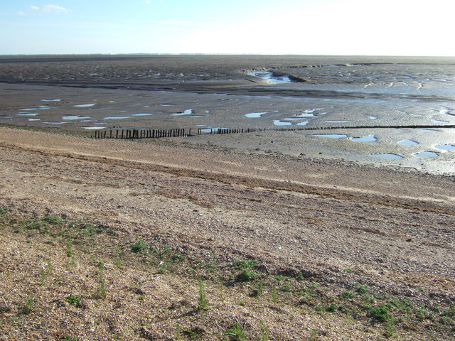 Shingle bank and mudflats