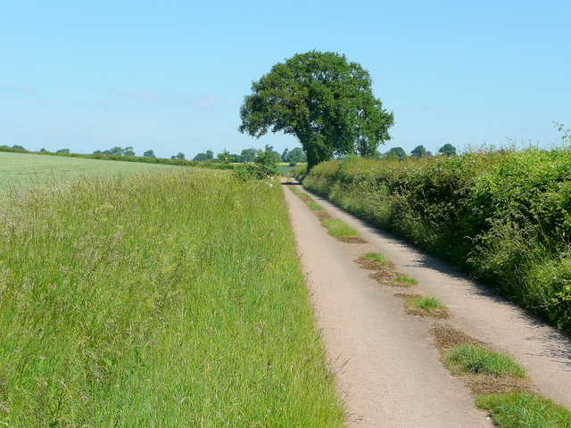Track to Gannah Farm