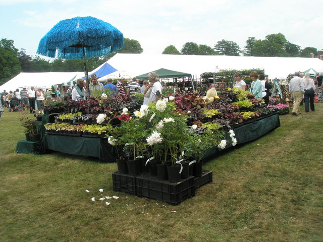 2010 Stansted House Garden Show- plant stall (16)