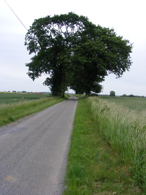 Between Loddon Ingloss and the Mundham road