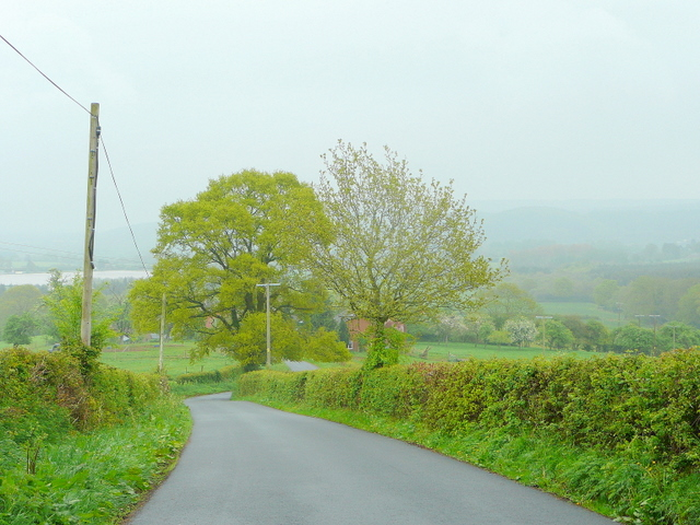 Bogmarsh Lane