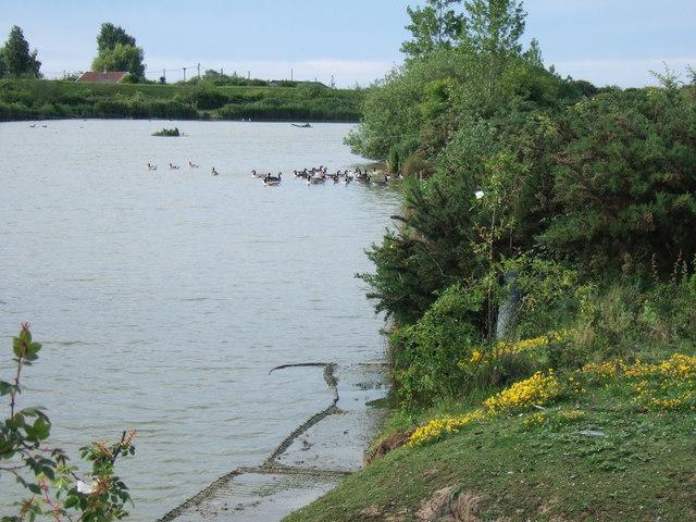 Fishing lake at Shepherd's Port, Snettisham