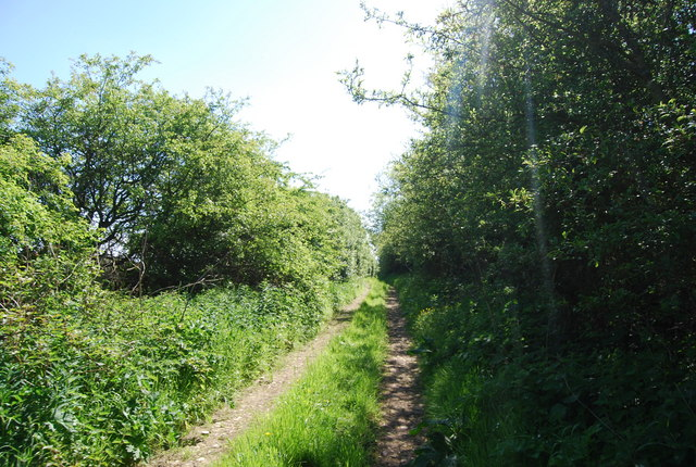 Footpath east of Low Flask Farm
