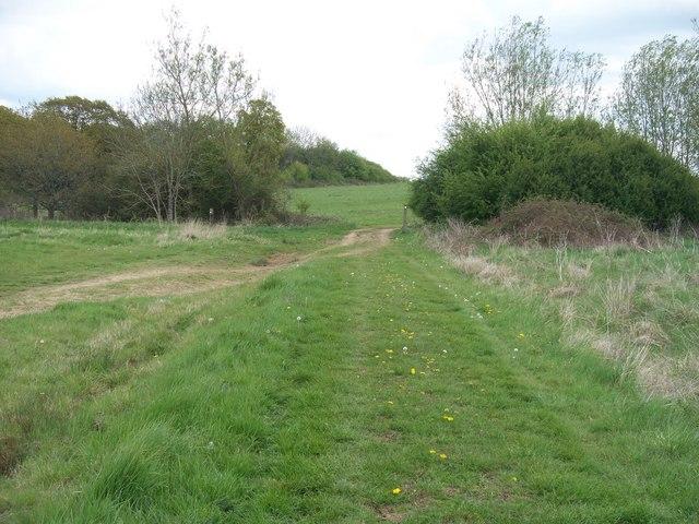 Bridleway to Gawcombe [4]