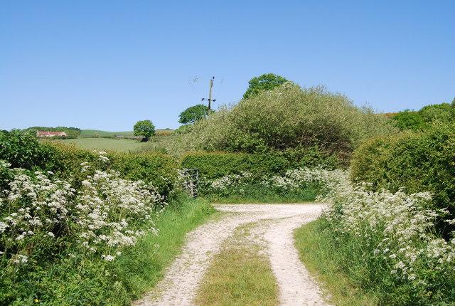 Track bend, Colcroft Farm