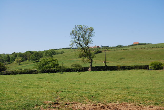 Farmland, Colcroft Farm