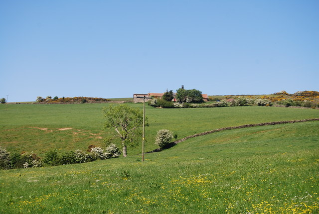 View to Swallow Head Farm