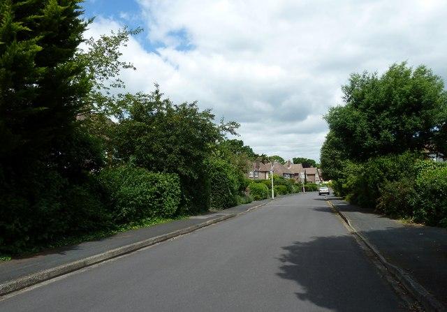 Clovelly Road on a lovely June morning