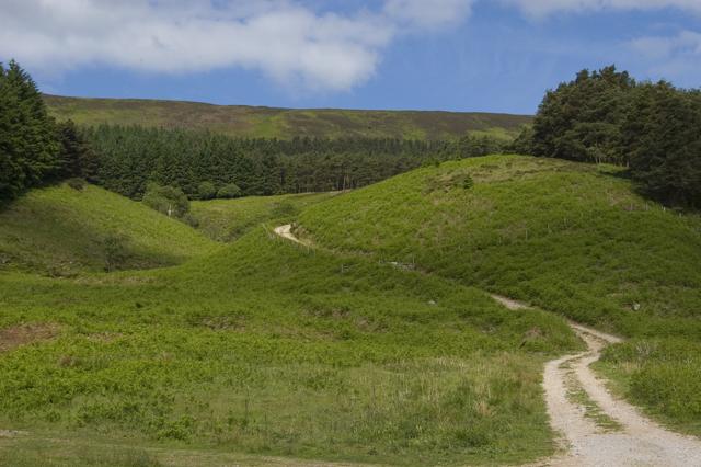 Track to Calder Moor