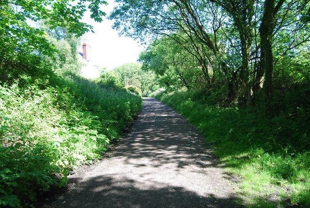 Old railway: northwards