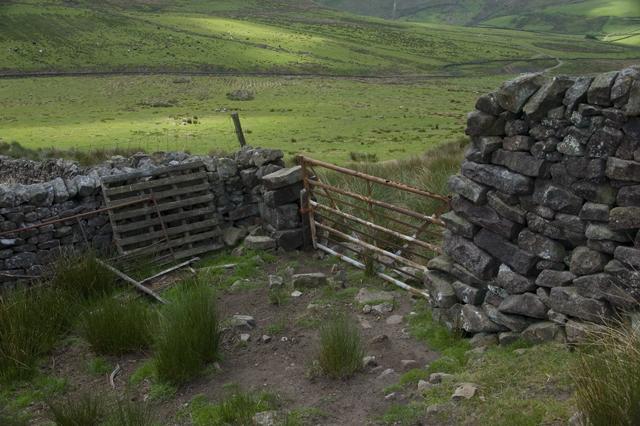 Fellside gate and stone walls at Hunter Hole