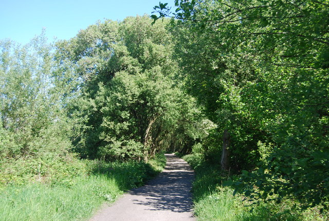 The old railway line: northwards