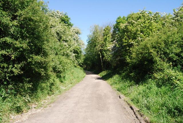 An old railway cutting