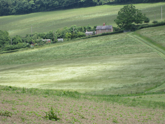 Arable crops on the slopes of Marcle Hill