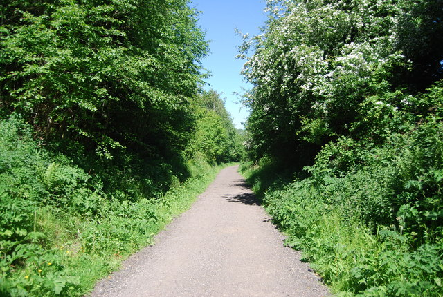Old railway through a wooded cutting