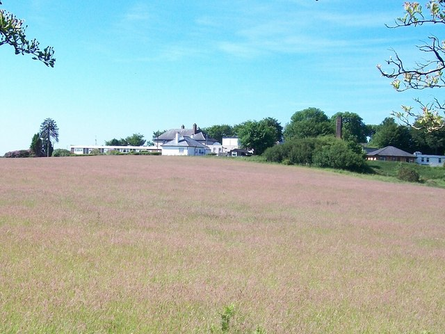 Ysbyty Bryn Beryl viewed across a meadow