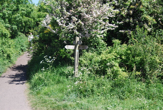 Finger post, Middlewood Lane
