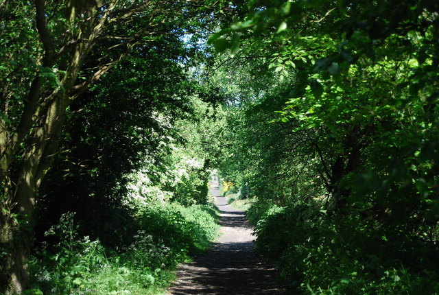 Old railway line north of Middlewood Lane