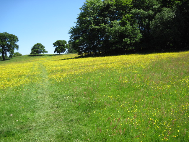 Footpath near Aldecarr Wood