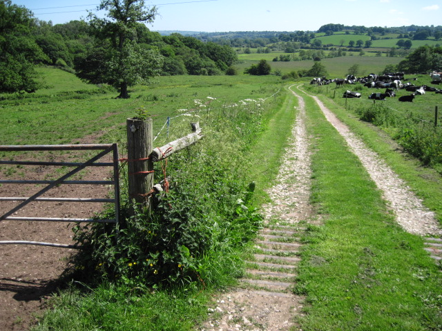 Footpath near Calwich Home Farm