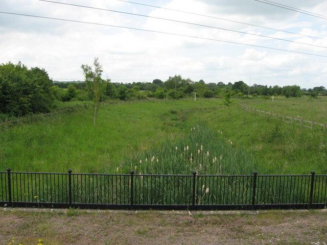 Stream beside Swindon & Cricklade Railway