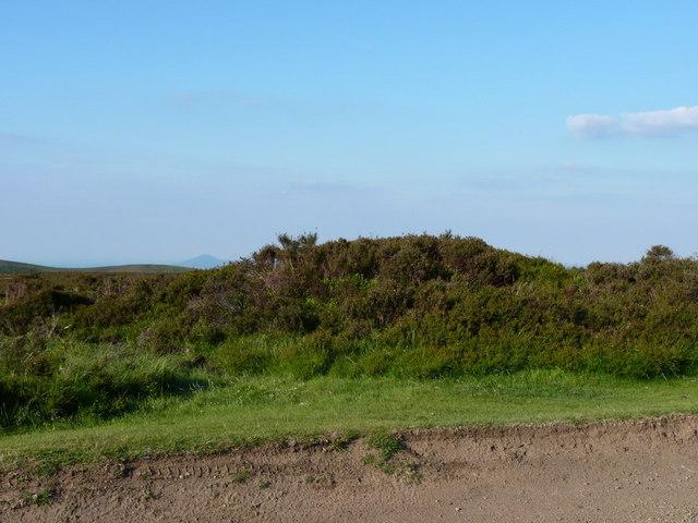 Tumulus above Cow Ridge