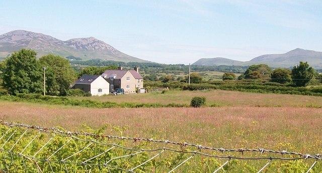 Tyddyn Perthi seen across a meadow from the A499