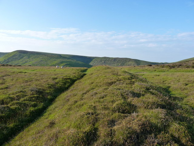 The Cross Dyke on Barrister's Plain
