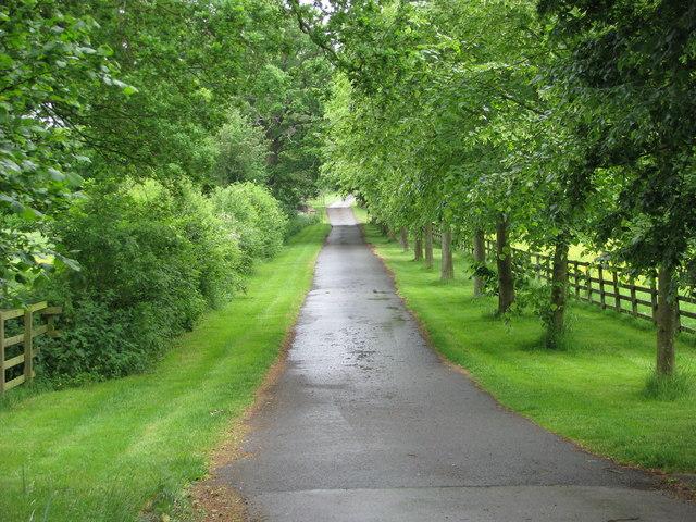 Access drive to Lodge Farm