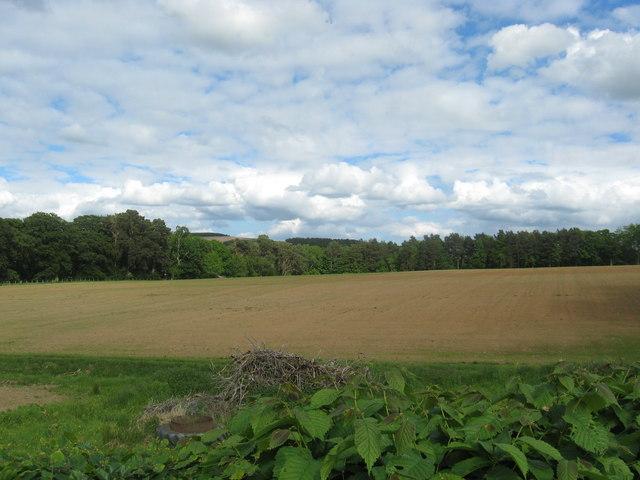 Farmland near Mervinslaw