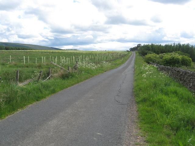 Minor road on its way to Hareshaw Knowe