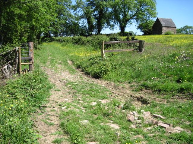 Footpath near Harlow Wood
