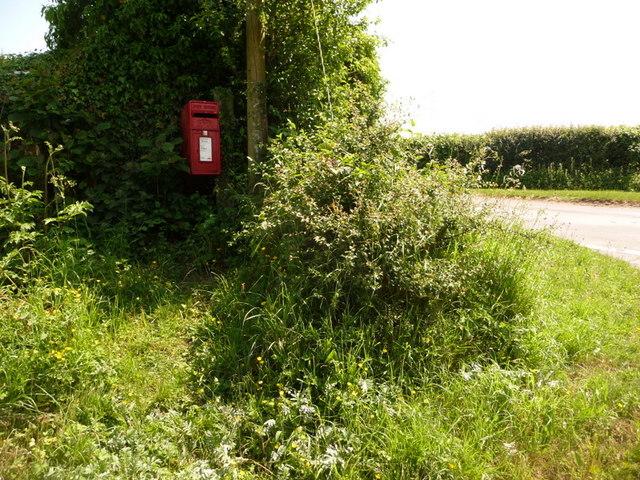 Stalbridge: postbox № DT10 9, Copse House