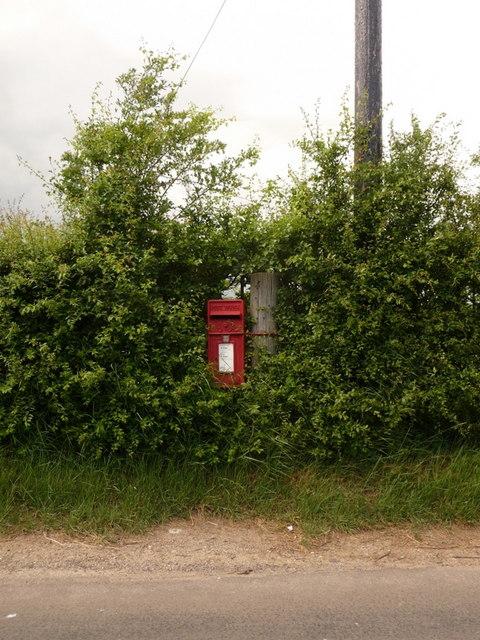 Fifehead Magdalen: postbox № SP8 94