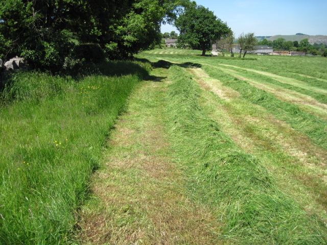 Footpath towards Lower Grounds Farm