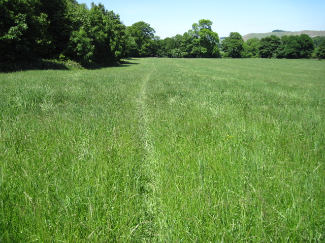 Footpath towards Woodhouses