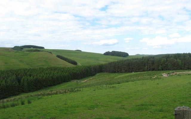 Grazing lands near Edgerston Tofts