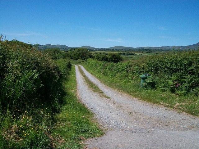 Private road to Gelli Farm