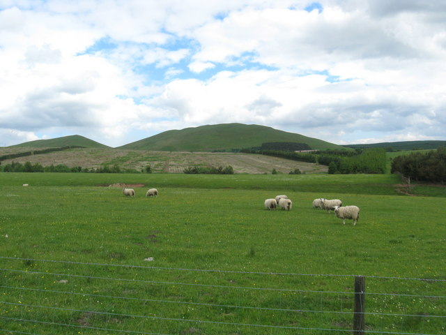 Grazing  land at Shielsknowe
