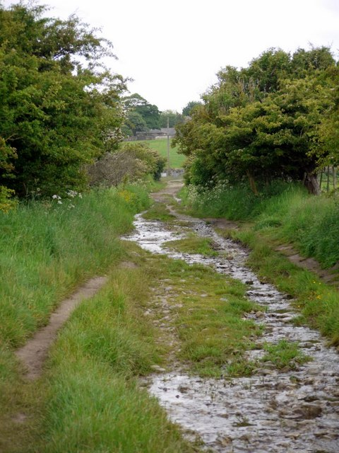 Track from Kiln Point to Budle