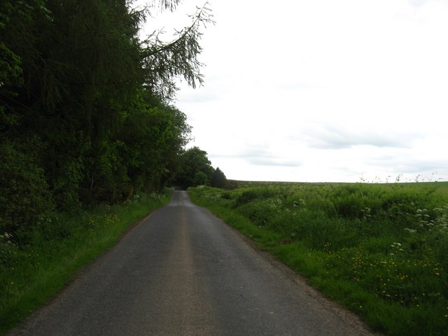 The road to Ashtrees