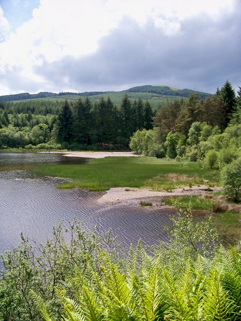 Dunoon Reservoir And Surrounding Forestry