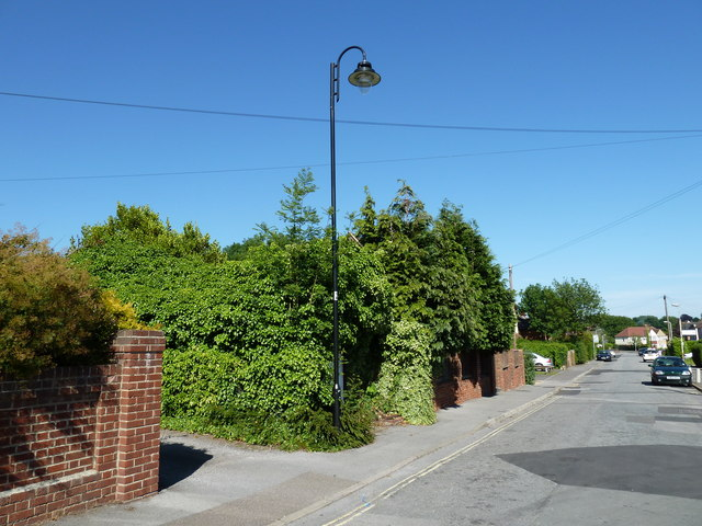 Lamppost in Stakes Road