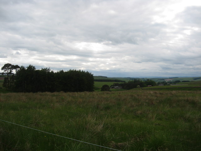 Rough grazing lands at Westerhouses
