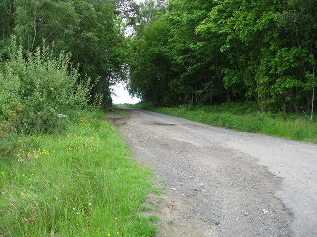Road to Woodside Farm