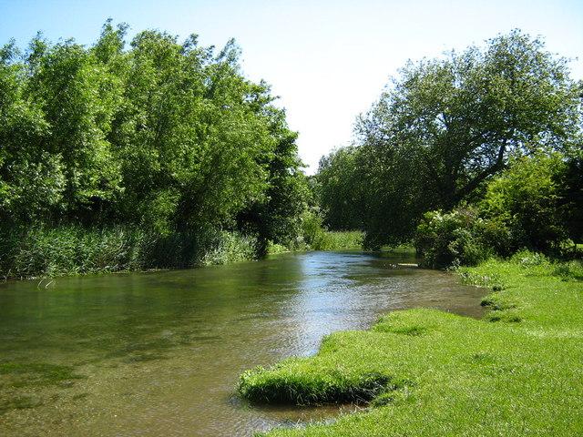 River Itchen near St Cross