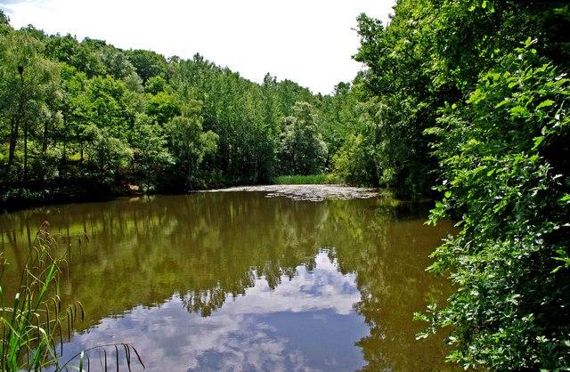 Pond near Uncllys Farm, Wyre Forest (2)