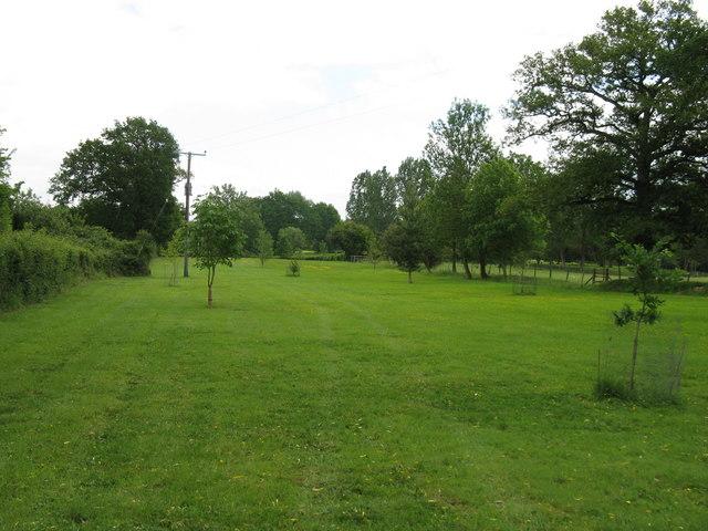 Footpath through landscaped field near Tugley Farm